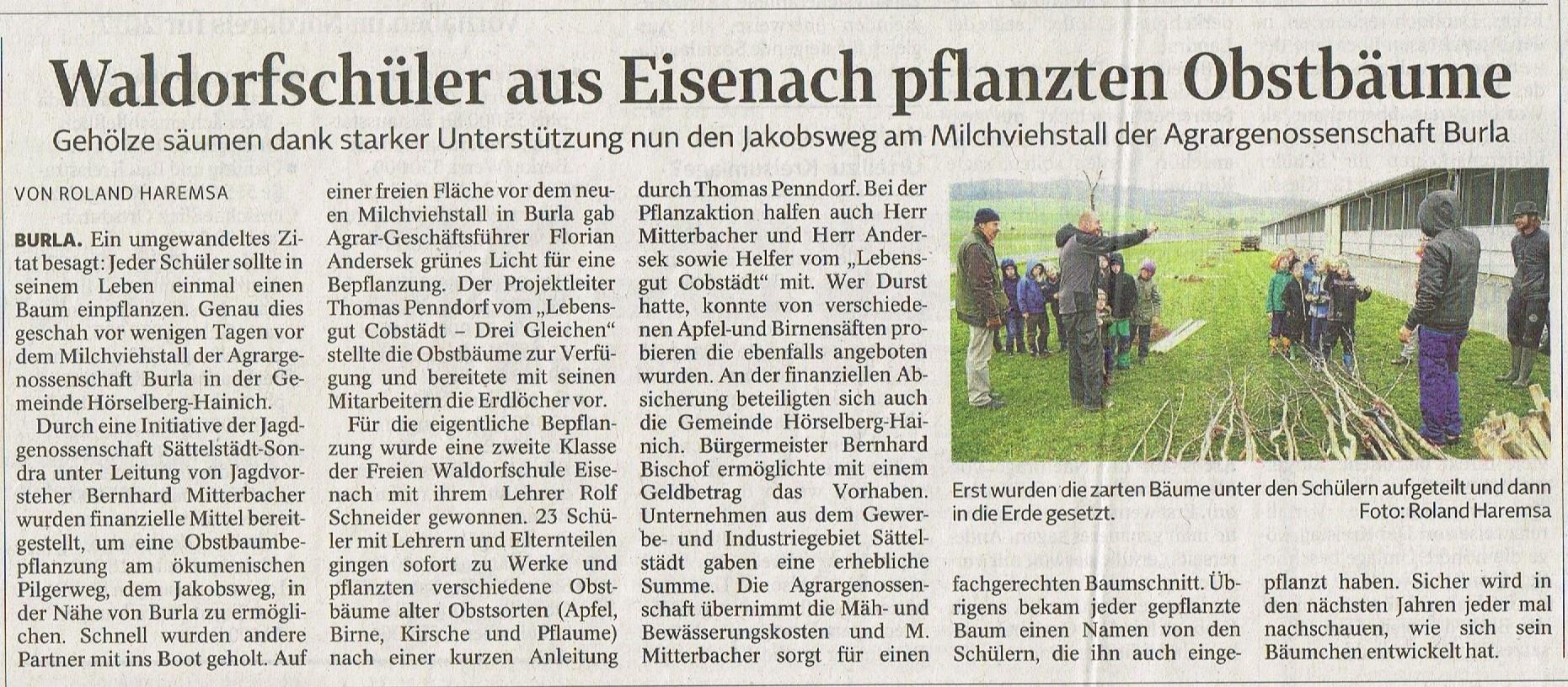Waldorfschüler aus Eisenach pflanzten Obstbäume (2016)